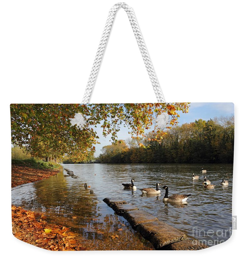 Autumn Colours At Sunbury On Thames Surrey Uk River Leaves The Surrey Countryside Weekender Tote Bag featuring the photograph Autumn Colours At Sunbury On Thames Surrey Uk by Julia Gavin