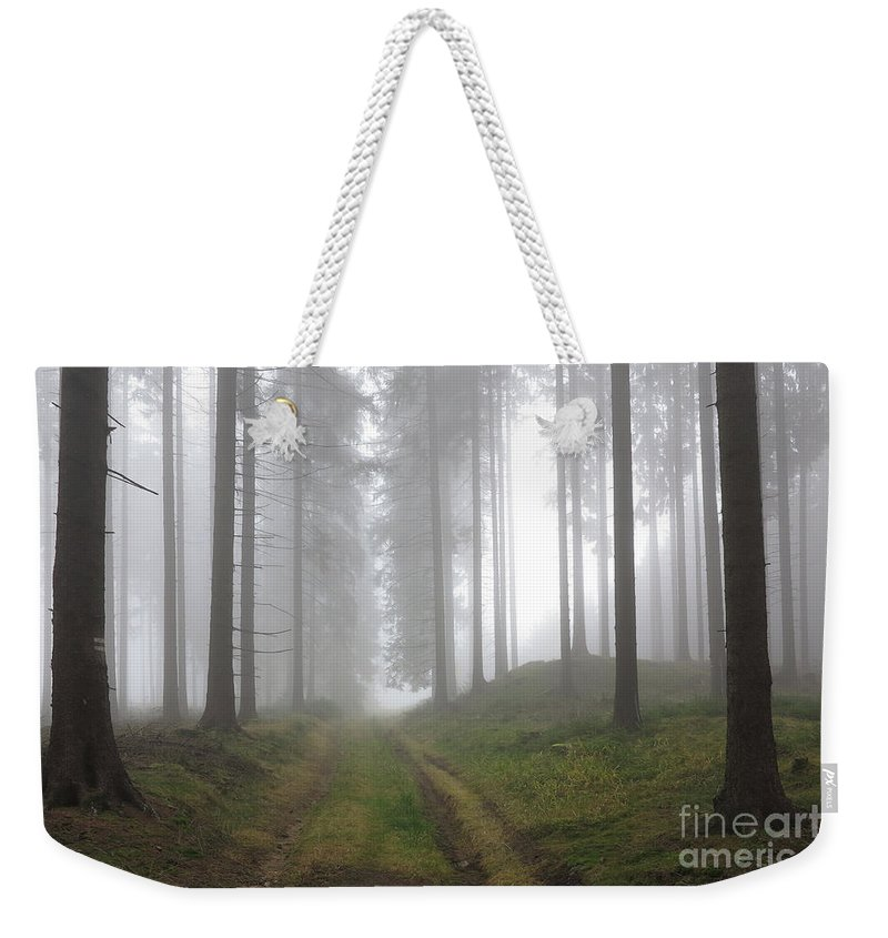Slavkov Weekender Tote Bag featuring the photograph Autumn Coniferous Forest In The Morning Mist by Michal Boubin