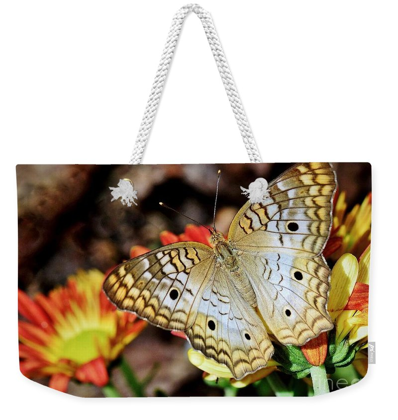 Butterfly Weekender Tote Bag featuring the photograph Autumn Delight by Lisa Renee Ludlum