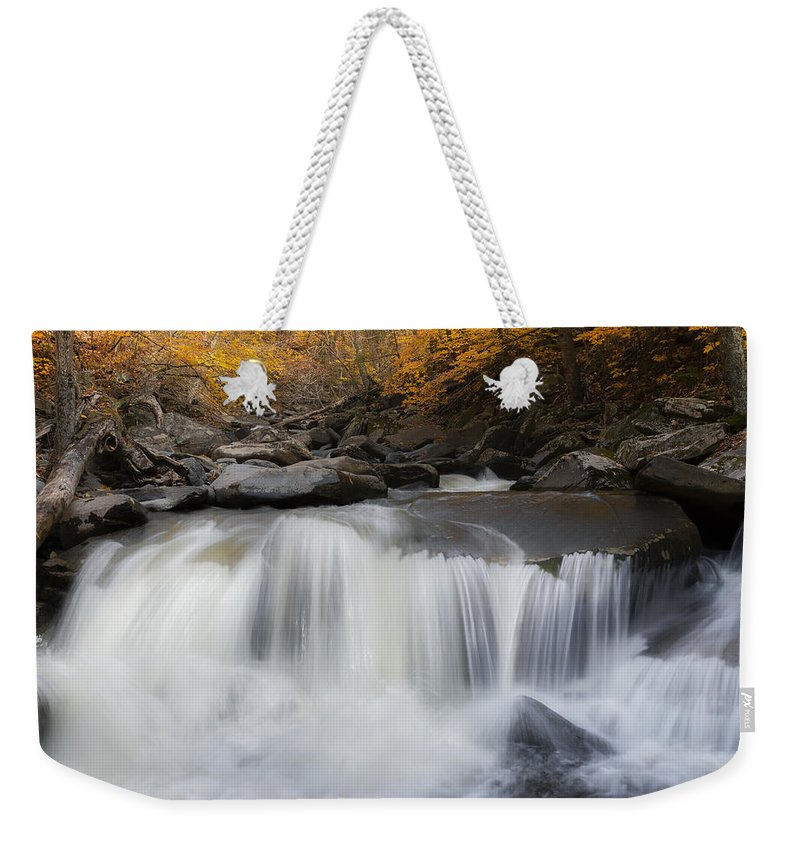 Square Weekender Tote Bag featuring the photograph Autumn Falling Square by Bill Wakeley