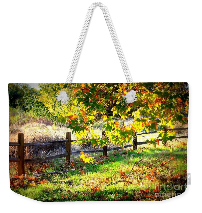Fences Weekender Tote Bag featuring the photograph Autumn Fence by Carol Groenen