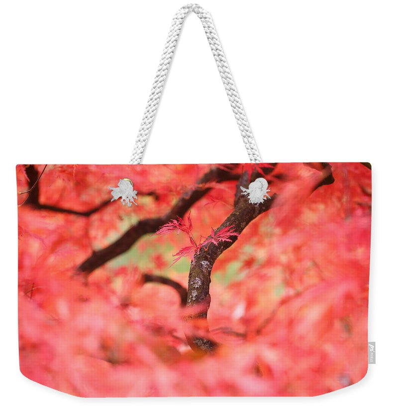 Autumn Weekender Tote Bag featuring the photograph Autumn From Within by Roeselien Raimond