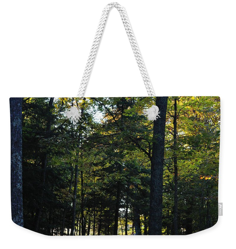 Fall Weekender Tote Bag featuring the photograph Autumn Glen by Tim Nyberg