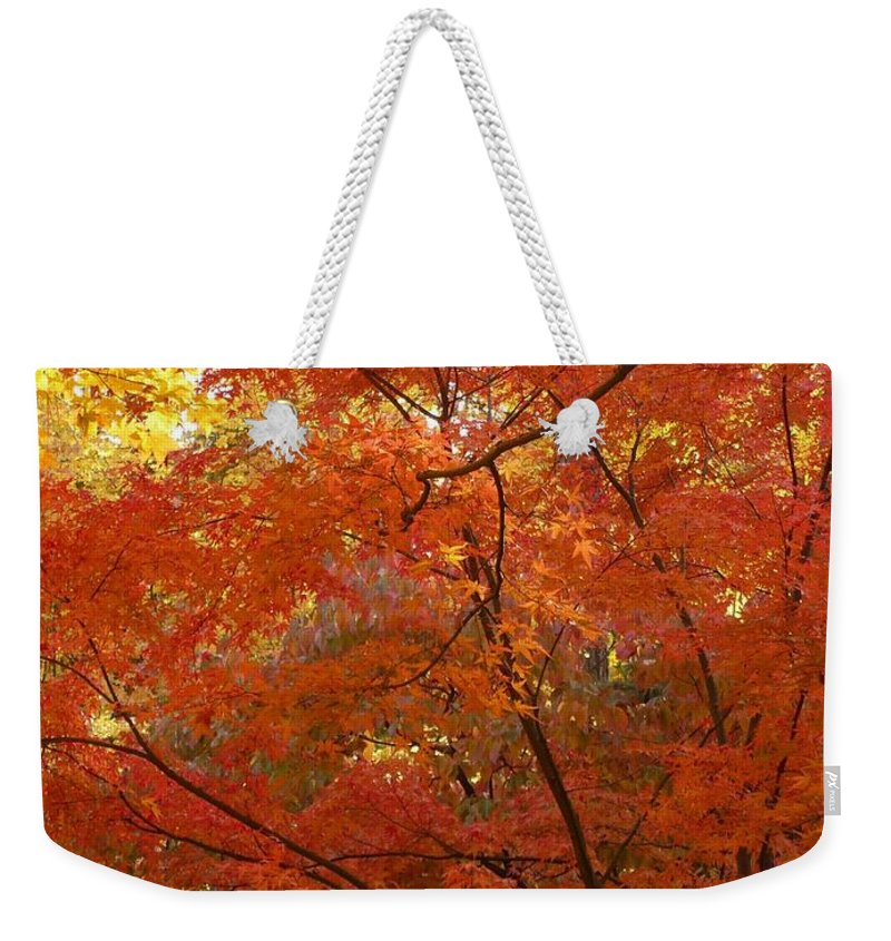 Fall Weekender Tote Bag featuring the photograph Autumn Gold Poster by Carol Groenen
