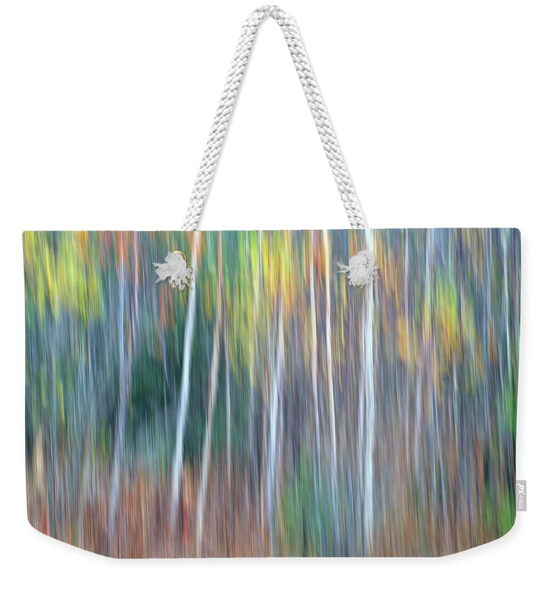 Forest Pastels Form An Autumn Impression Weekender Tote Bag featuring the photograph Autumn Impression by Bill Morgenstern