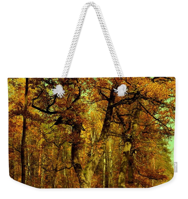 Henryk Weekender Tote Bag featuring the photograph Autumn In Forest by Henryk Gorecki