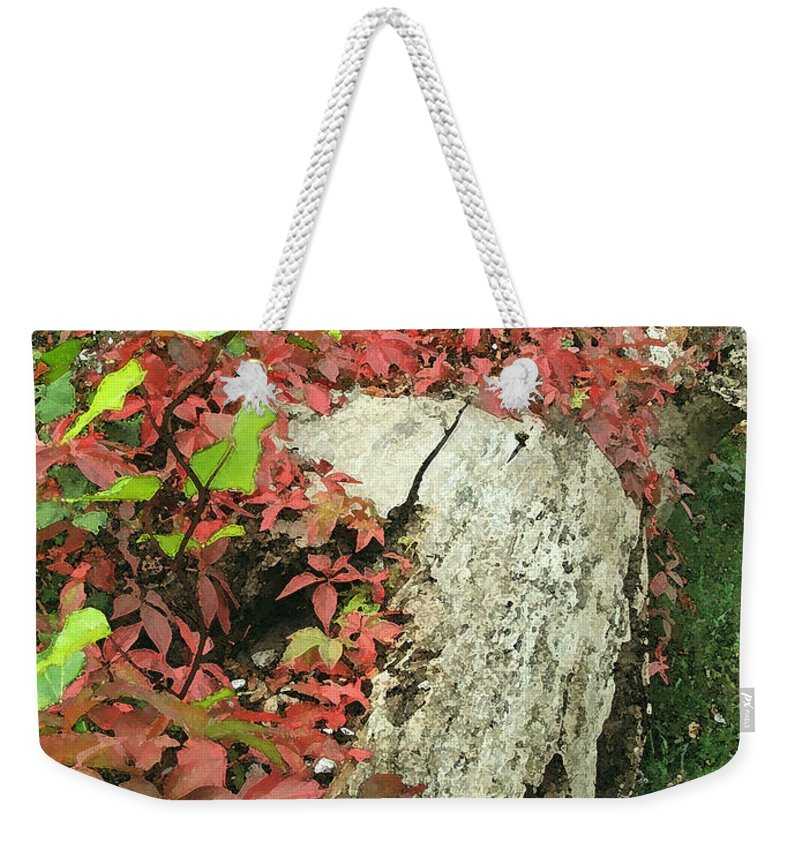 Hampstead Weekender Tote Bag featuring the photograph Autumn In Hampstead by Heather Lennox