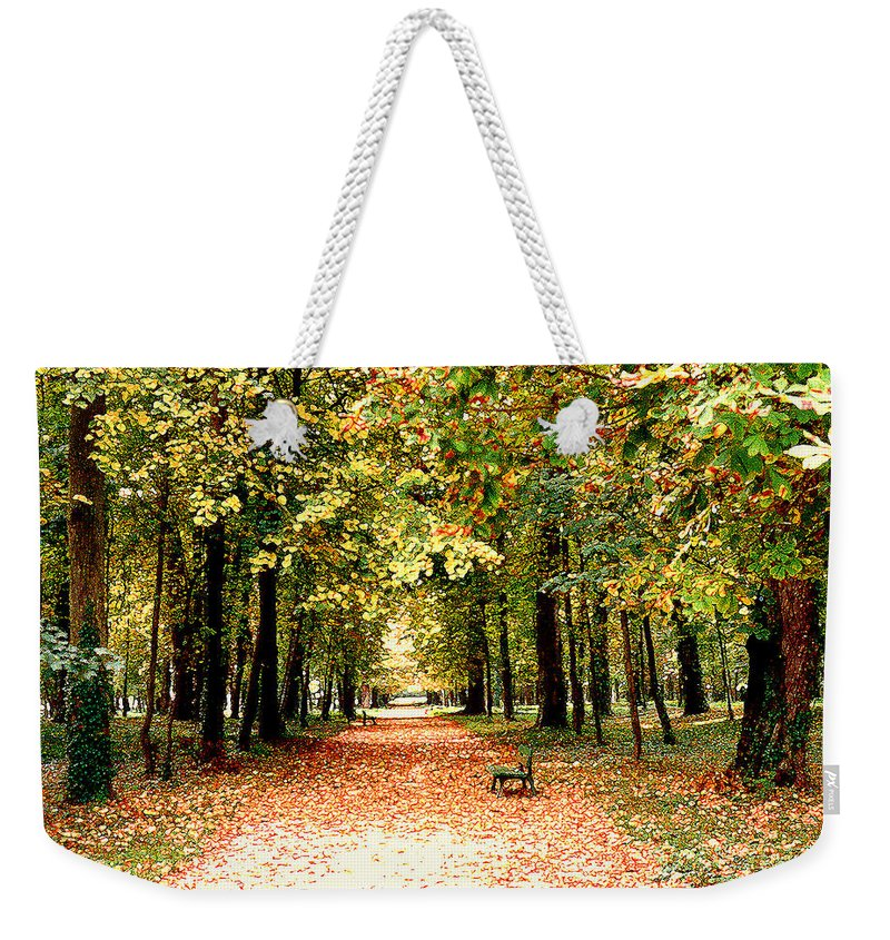Autumn Weekender Tote Bag featuring the photograph Autumn In The Park by Nancy Mueller