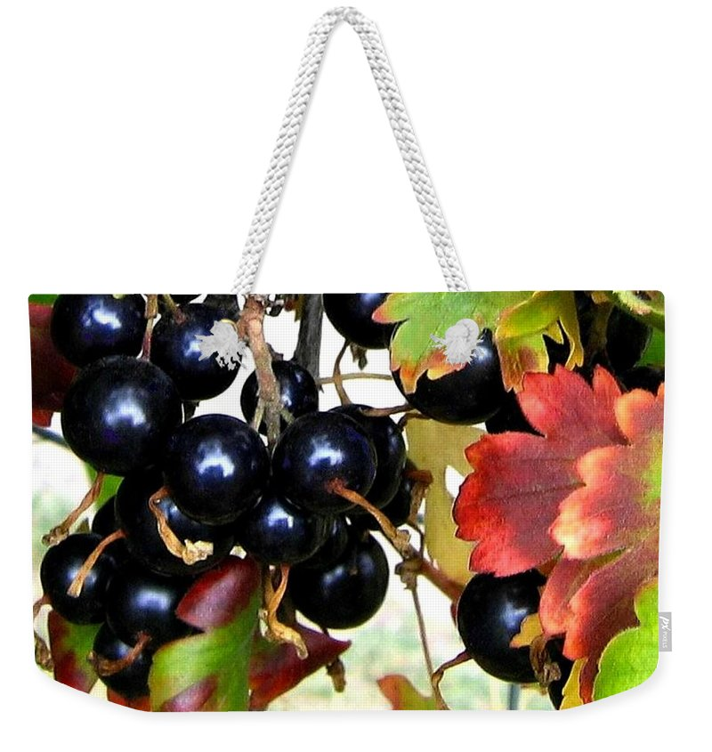 Autumn Weekender Tote Bag featuring the photograph Autumn Jostaberries by Will Borden
