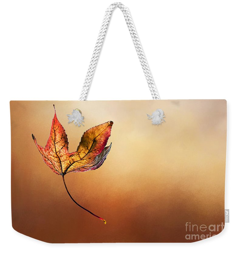 Photography Weekender Tote Bag featuring the photograph Autumn Leaf Falling By Kaye Menner by Kaye Menner