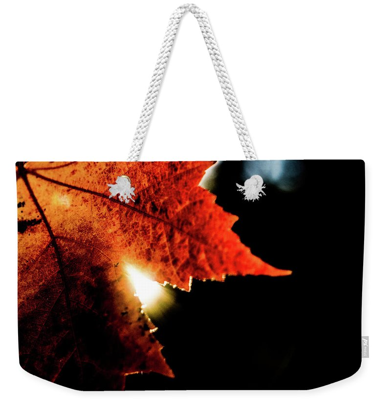 Photograph Weekender Tote Bag featuring the photograph Autumn Leaf by John Unwin