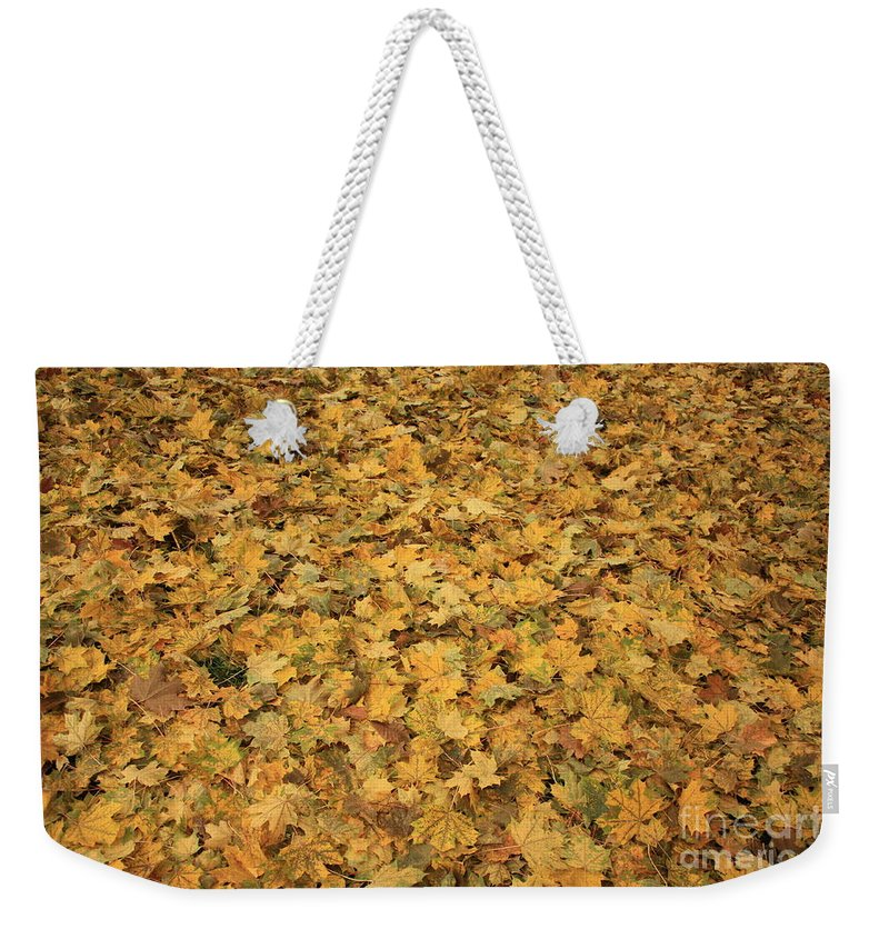 Autumn Weekender Tote Bag featuring the photograph Autumn Leaves Canvas by Carol Groenen