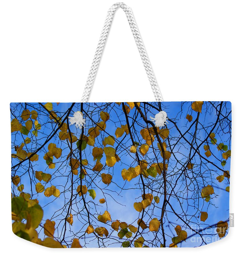 Autumn Weekender Tote Bag featuring the photograph Autumn Leaves by Carol Lynch