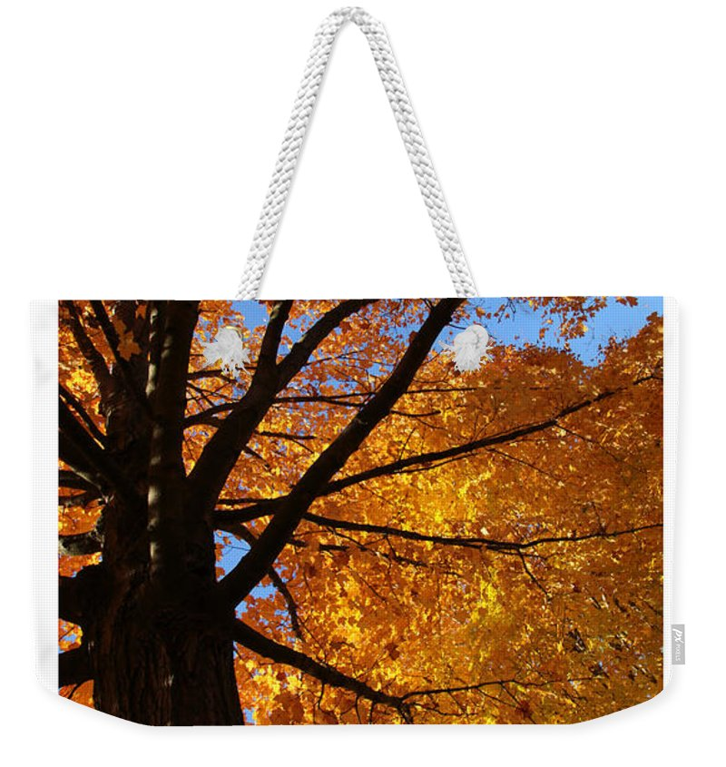 Scripture Weekender Tote Bag featuring the photograph Autumn Leaves by Debbie Nobile