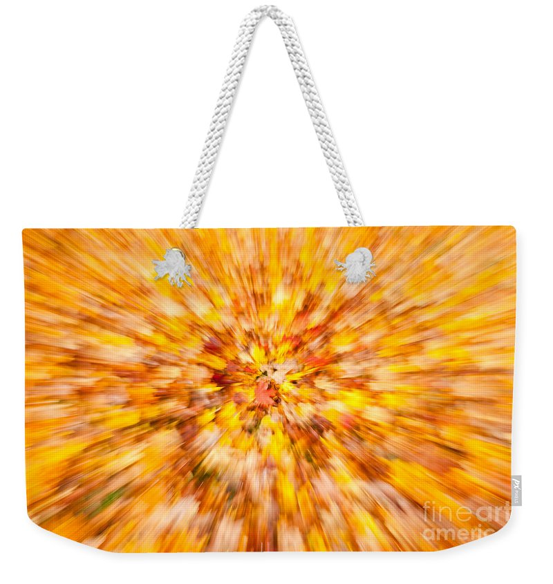 Clarence Holmes Weekender Tote Bag featuring the photograph Autumn Leaves I by Clarence Holmes