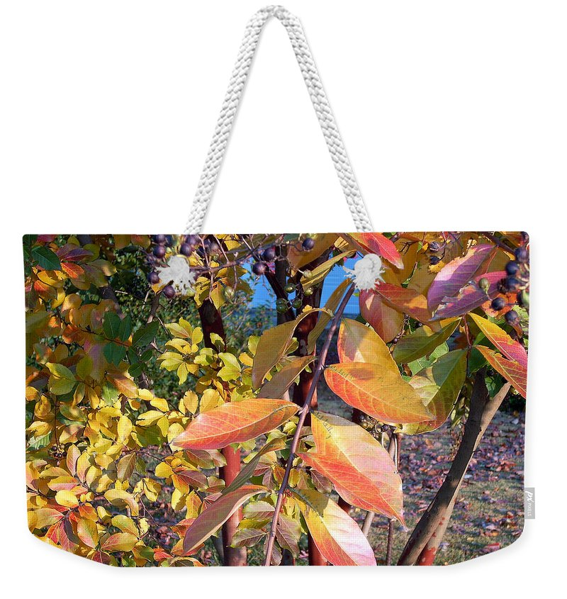 Fall Pictures Weekender Tote Bag featuring the photograph Autumn Leaves by Karin Dawn Kelshall- Best