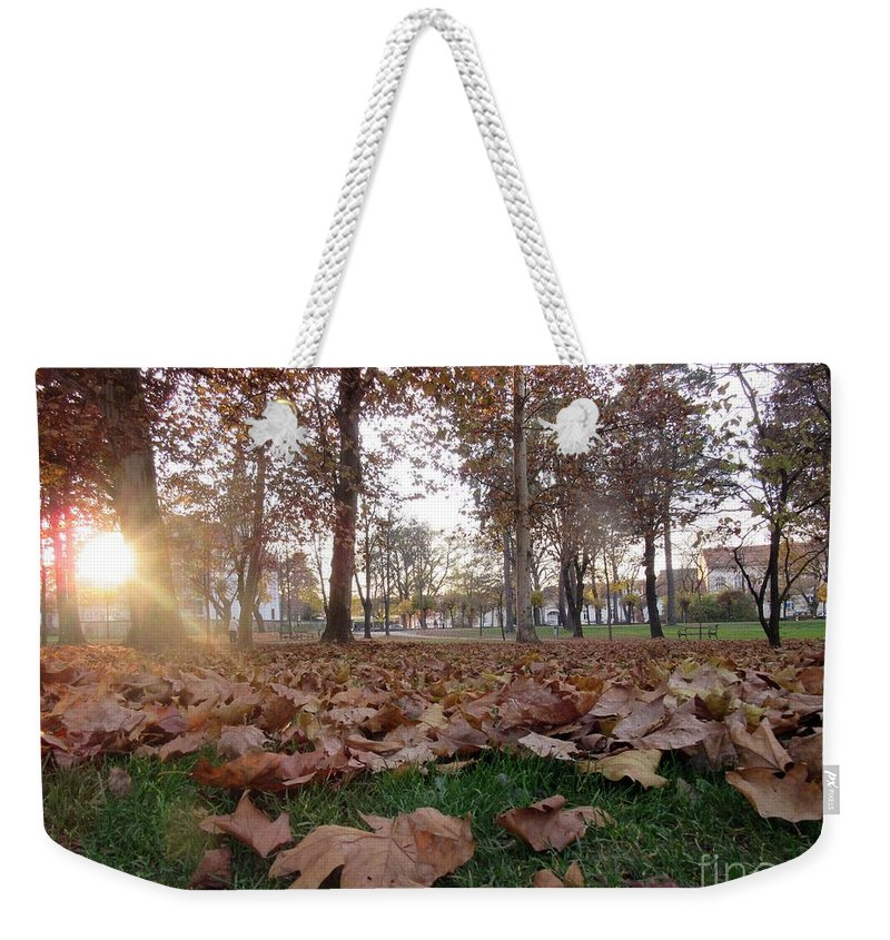 Autumn Weekender Tote Bag featuring the photograph Autumn Leaves by Vesna Martinjak