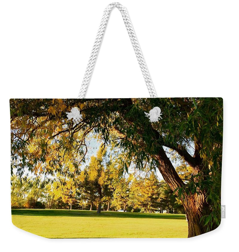 Autumn Weekender Tote Bag featuring the photograph Autumn Light by Cristina Stefan