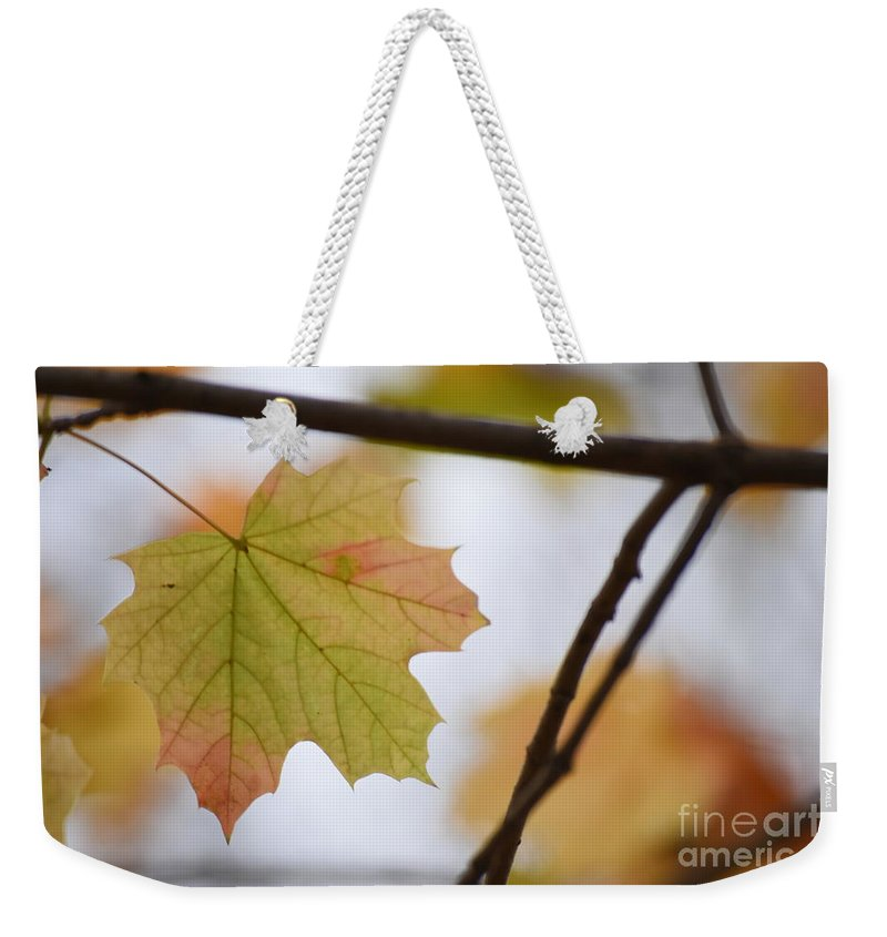 Maple Weekender Tote Bag featuring the photograph Autumn Maple Leaves Horizontal by Rowena Throckmorton