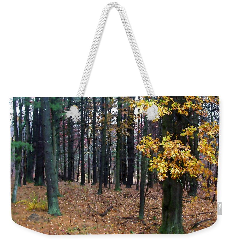 Autumn Weekender Tote Bag featuring the painting Autumn Morning by Paul Sachtleben