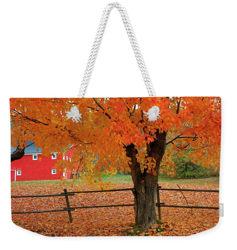 Canada Weekender Tote Bag featuring the photograph Autumn Near New Germany, Nova Scotia by Gary Corbett