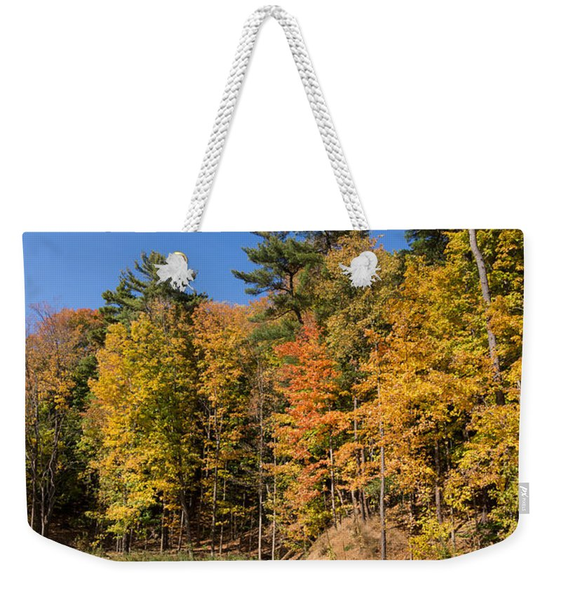 Georgia Mizuleva Weekender Tote Bag featuring the photograph Autumn On The Riverbank - The Changing Forest by Georgia Mizuleva