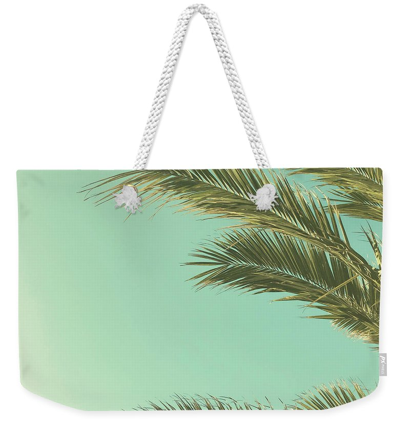 Palm Trees Weekender Tote Bag featuring the photograph Autumn Palms II by Cassia Beck
