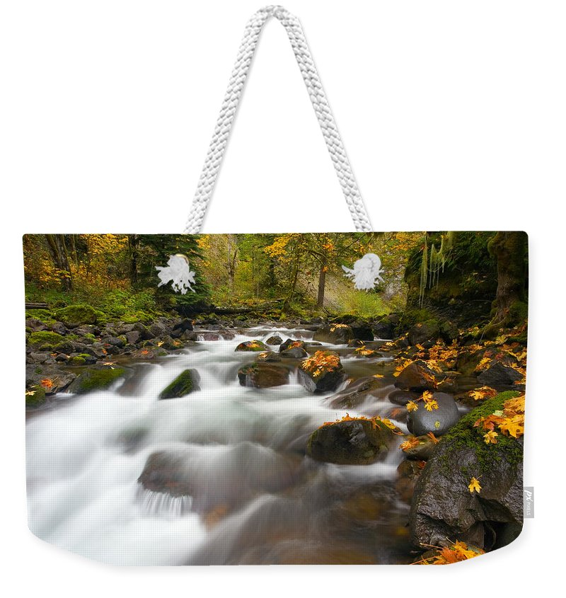 Stream Weekender Tote Bag featuring the photograph Autumn Passages by Mike Dawson
