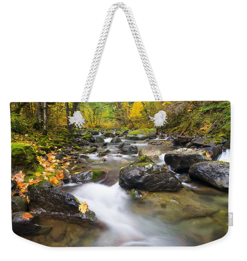 Fall Weekender Tote Bag featuring the photograph Autumn Passing by Mike Dawson