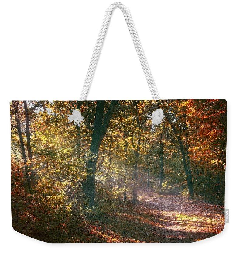Designs Similar to Autumn Path by Scott Norris