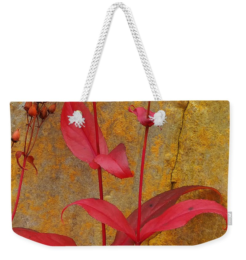 Penstemon Weekender Tote Bag featuring the photograph Autumn Penstemon by Mike Nellums