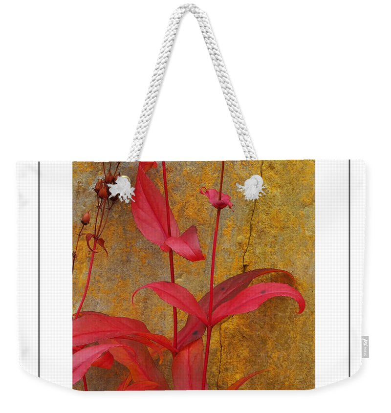 Penstemon Weekender Tote Bag featuring the photograph Autumn Penstemon Poster by Mike Nellums