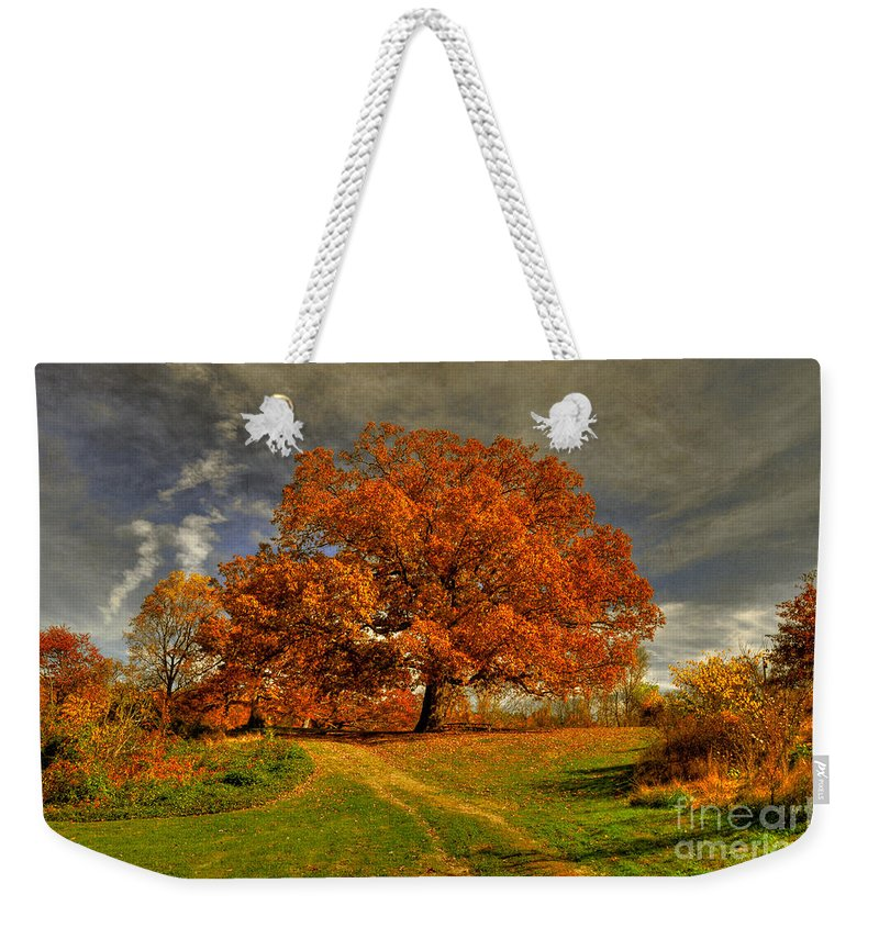 Autumn Weekender Tote Bag featuring the photograph Autumn Picnic On The Hill by Lois Bryan