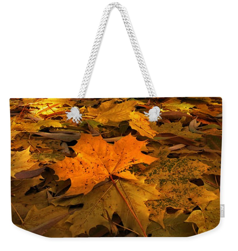 Autumn Weekender Tote Bag featuring the photograph Autumn Quilt by David Andersen