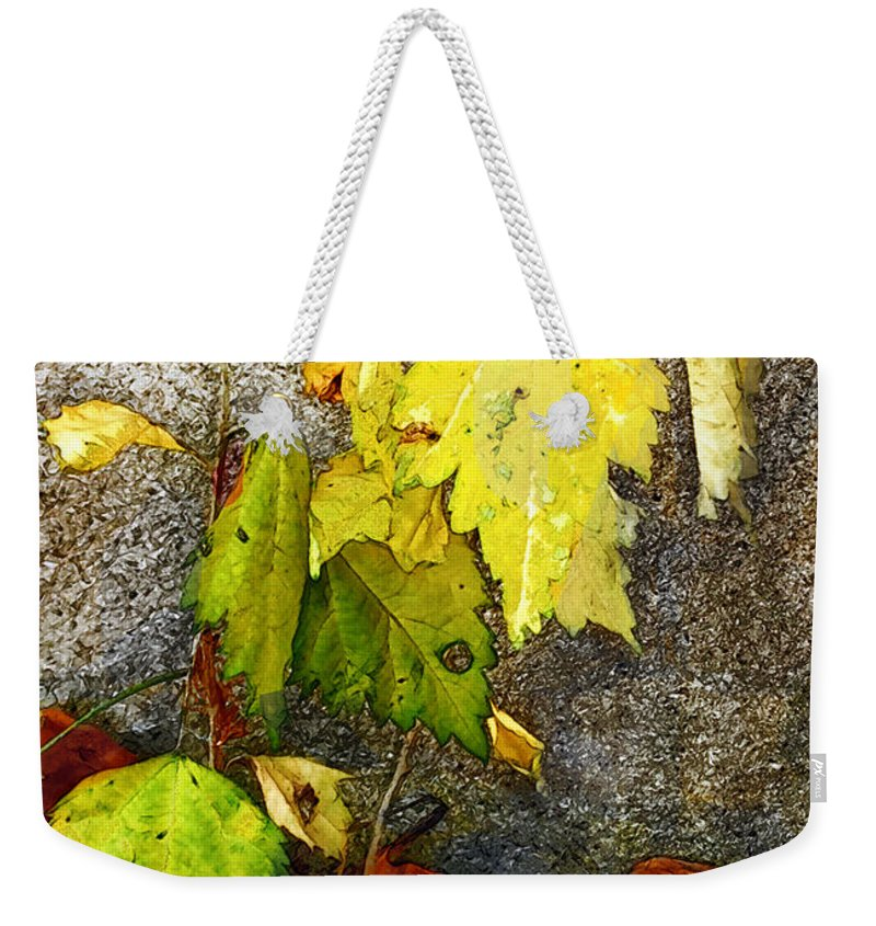 Autumn Weekender Tote Bag featuring the painting Autumn Rainbow by RC DeWinter