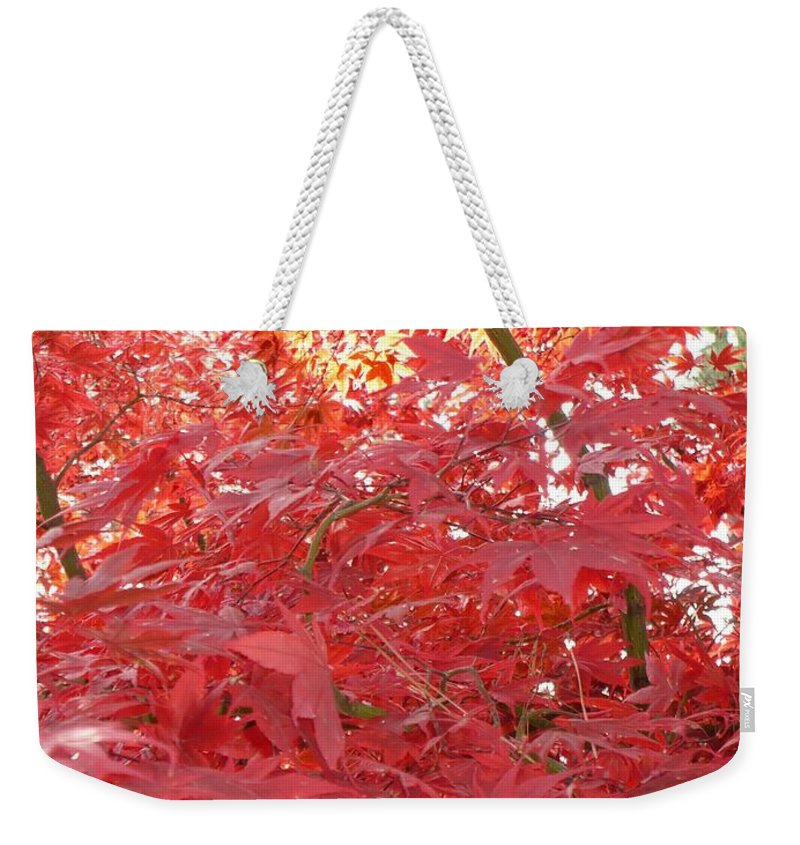 Autumn Weekender Tote Bag featuring the photograph Autumn Red Poster by Carol Groenen