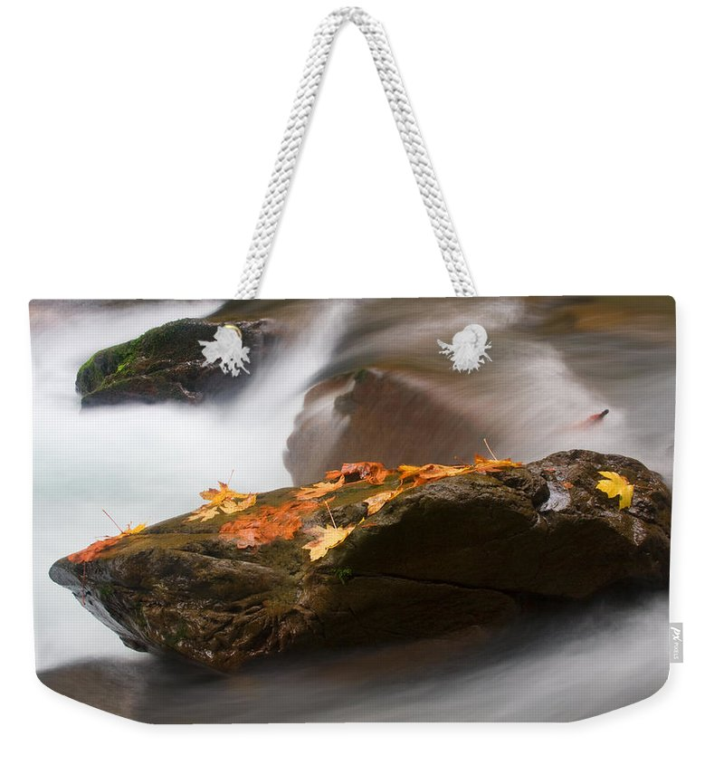 Leaves Weekender Tote Bag featuring the photograph Autumn Resting Place by Mike Dawson