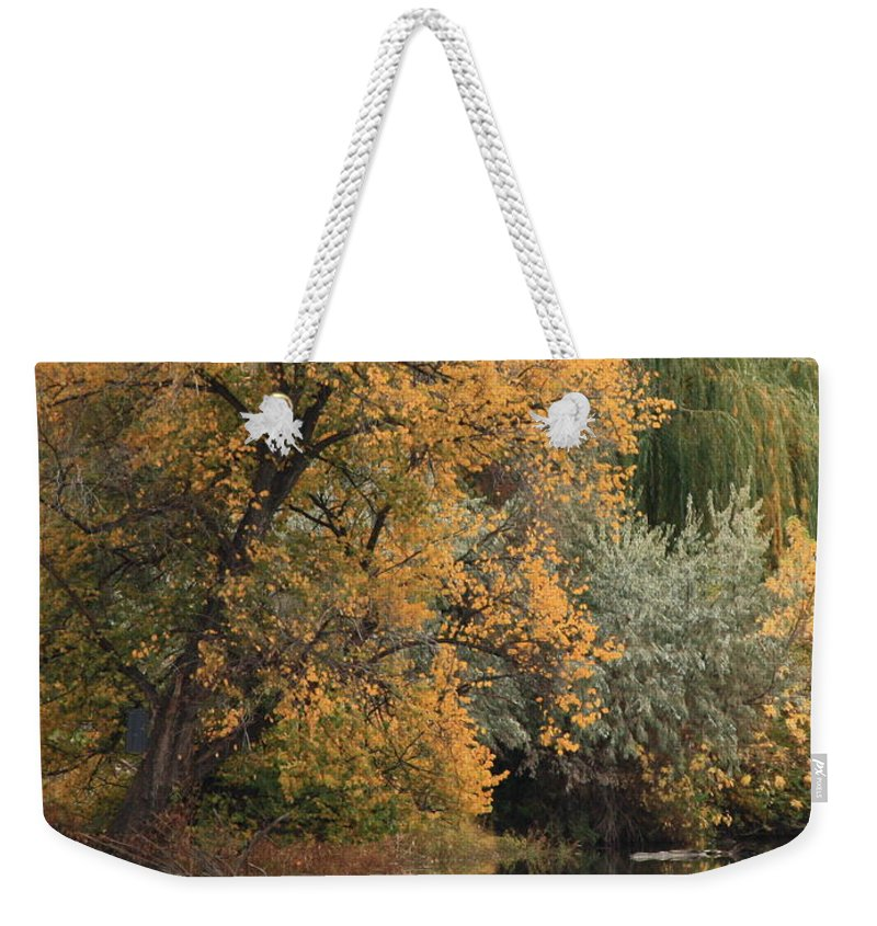 Landscape Weekender Tote Bag featuring the photograph Autumn Riverbank by Carol Groenen