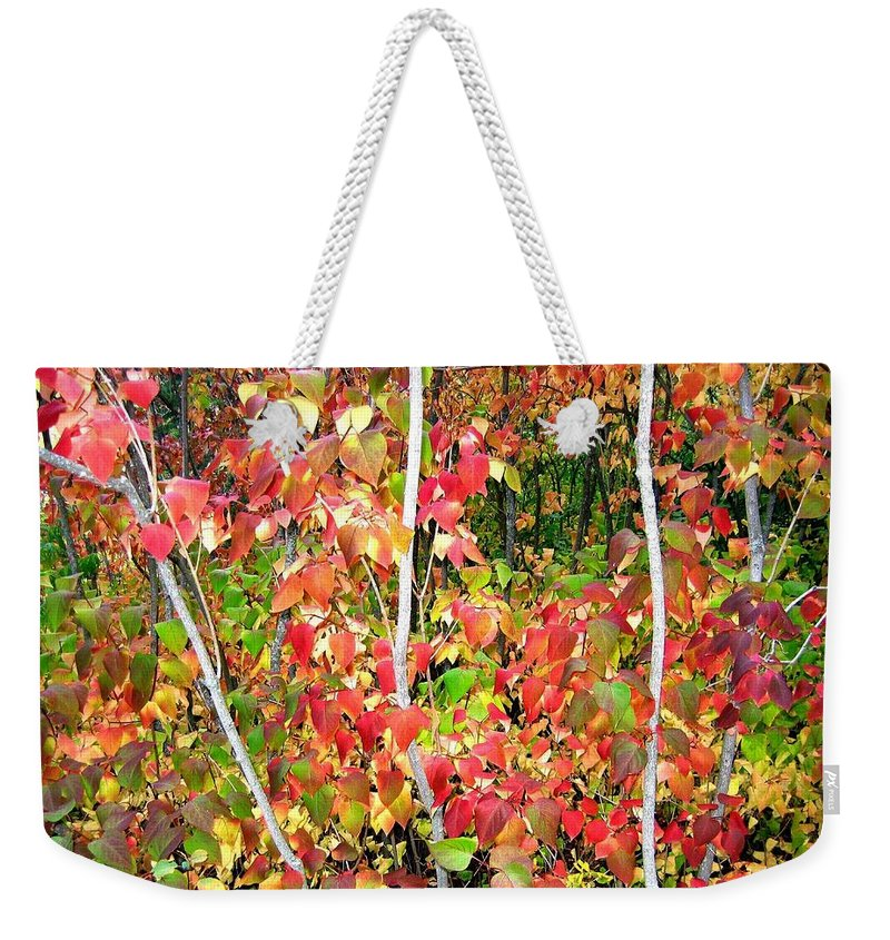 Autumn Weekender Tote Bag featuring the photograph Autumn Sanctuary by Will Borden