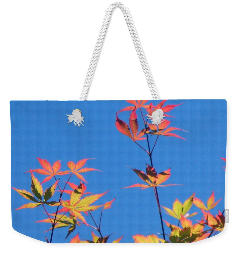 Landscape Weekender Tote Bag featuring the photograph Autumn Skies by Dawn Marshall