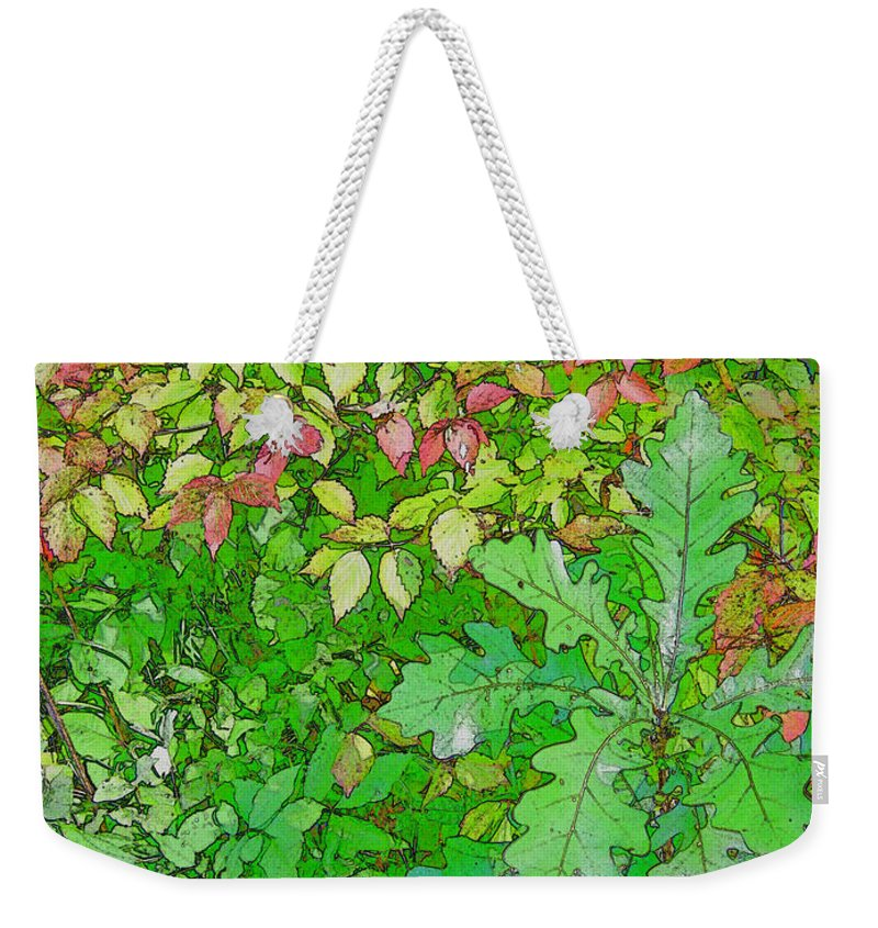 Leaves Weekender Tote Bag featuring the photograph Autumn Splender by Joanne Smoley