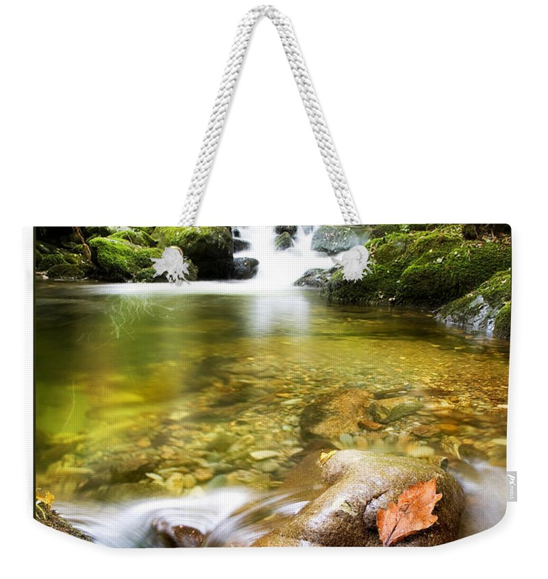 Stream Weekender Tote Bag featuring the photograph Autumn Stream by Mal Bray