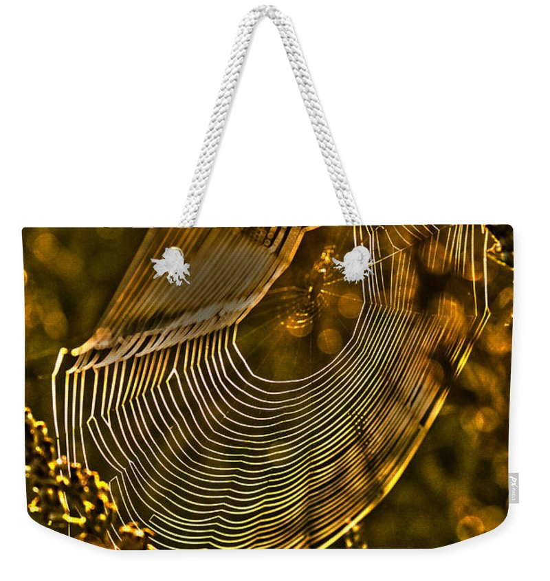 Autumn Weekender Tote Bag featuring the photograph Autumn Sunrise With Spider Web by Guna Andersone