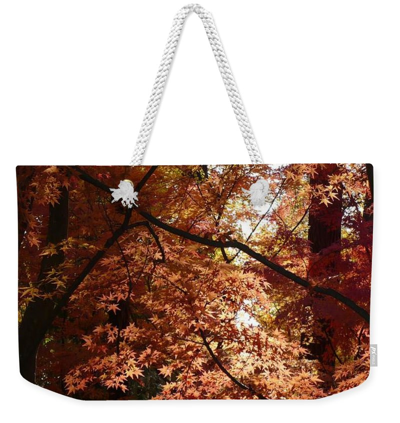 Spokane Weekender Tote Bag featuring the photograph Autumn Sunshine Poster by Carol Groenen