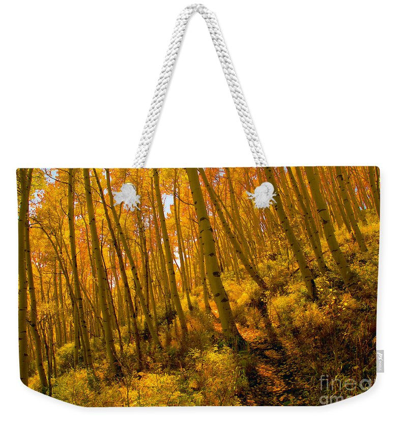 Autumn Weekender Tote Bag featuring the photograph Autumn Trail by David Lee Thompson