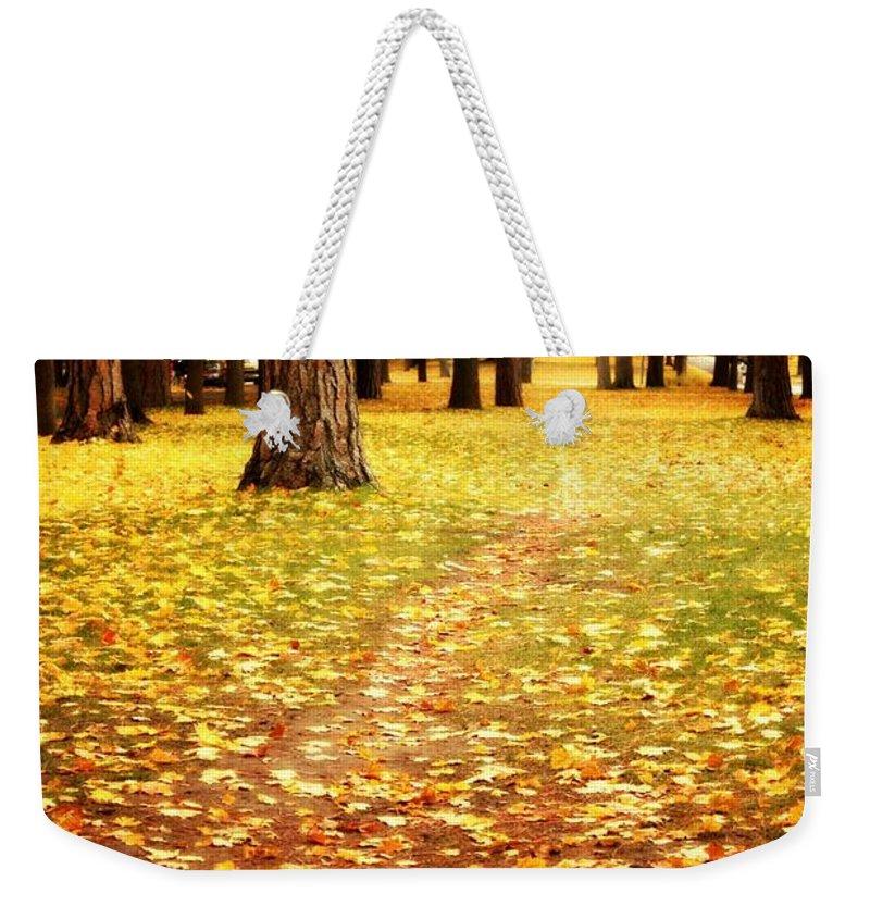Autumn Weekender Tote Bag featuring the photograph Autumn Walk In Spokane by Carol Groenen