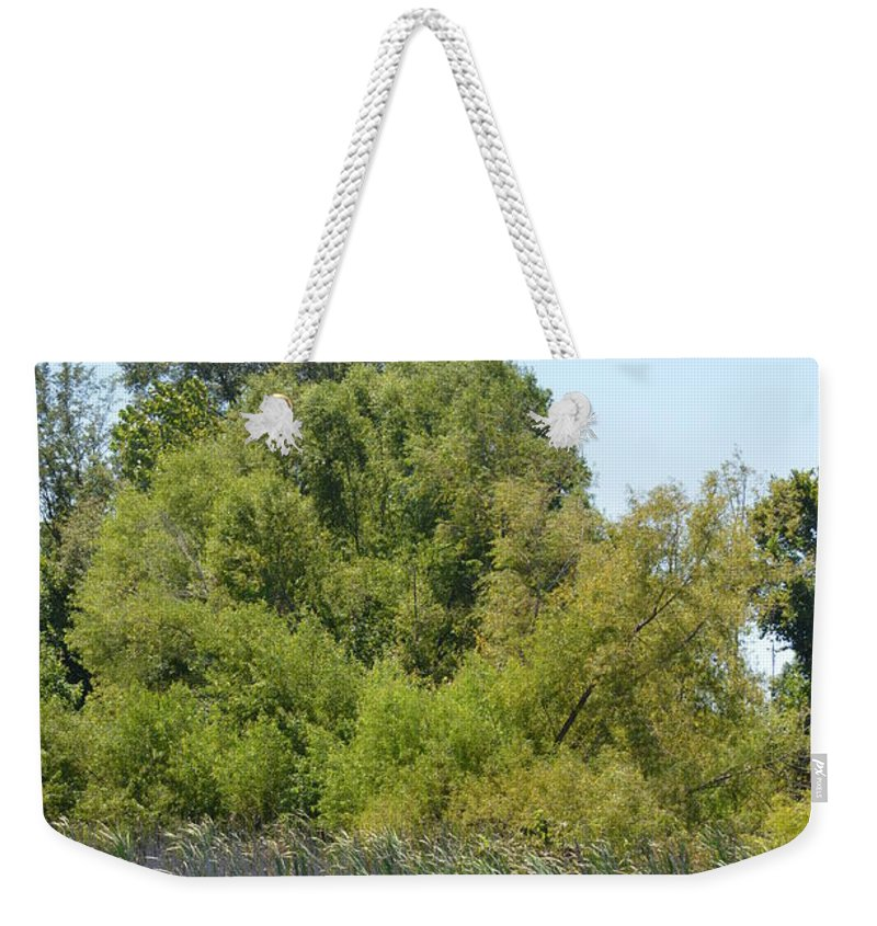 Autumn Winds Weekender Tote Bag featuring the photograph Autumn Winds by Maria Urso