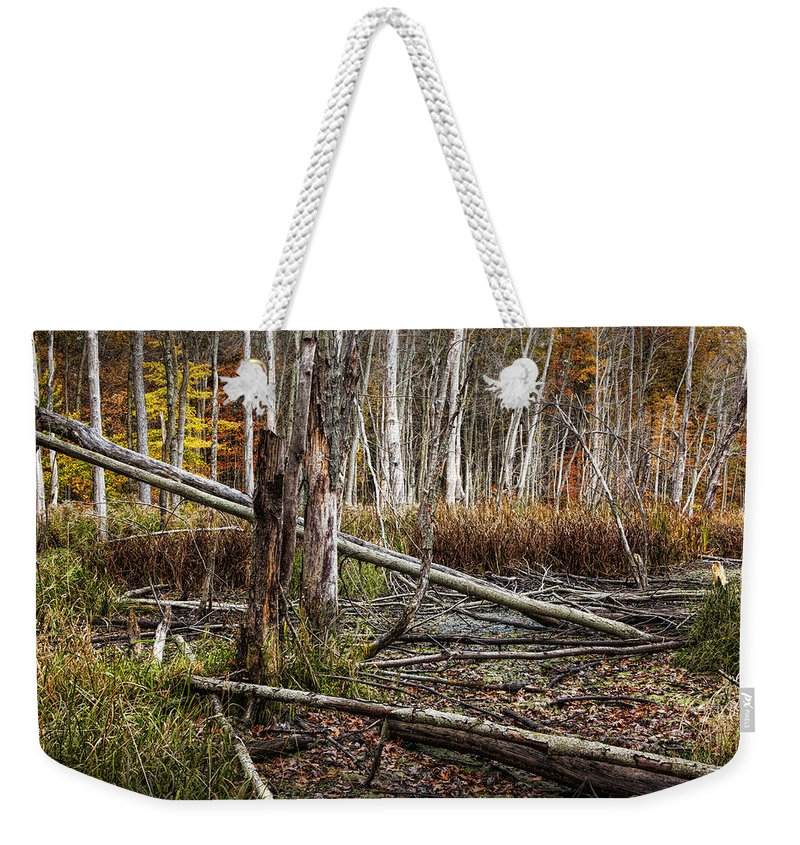 Marsh Weekender Tote Bag featuring the photograph Autumn Woodland Marsh Scene by Randall Nyhof