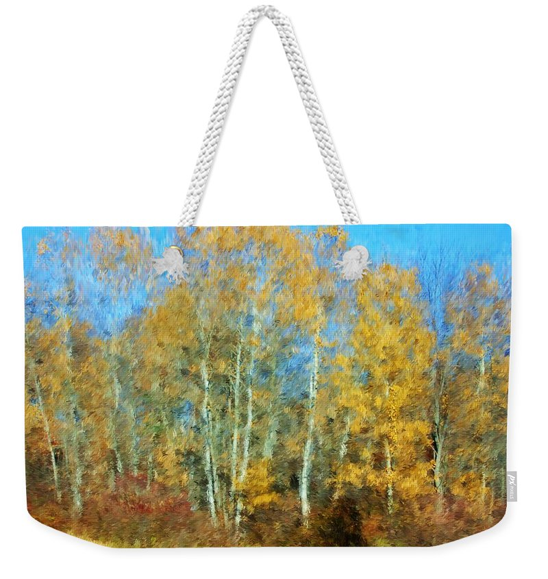 Weekender Tote Bag featuring the photograph Autumn Woodlot by David Lane
