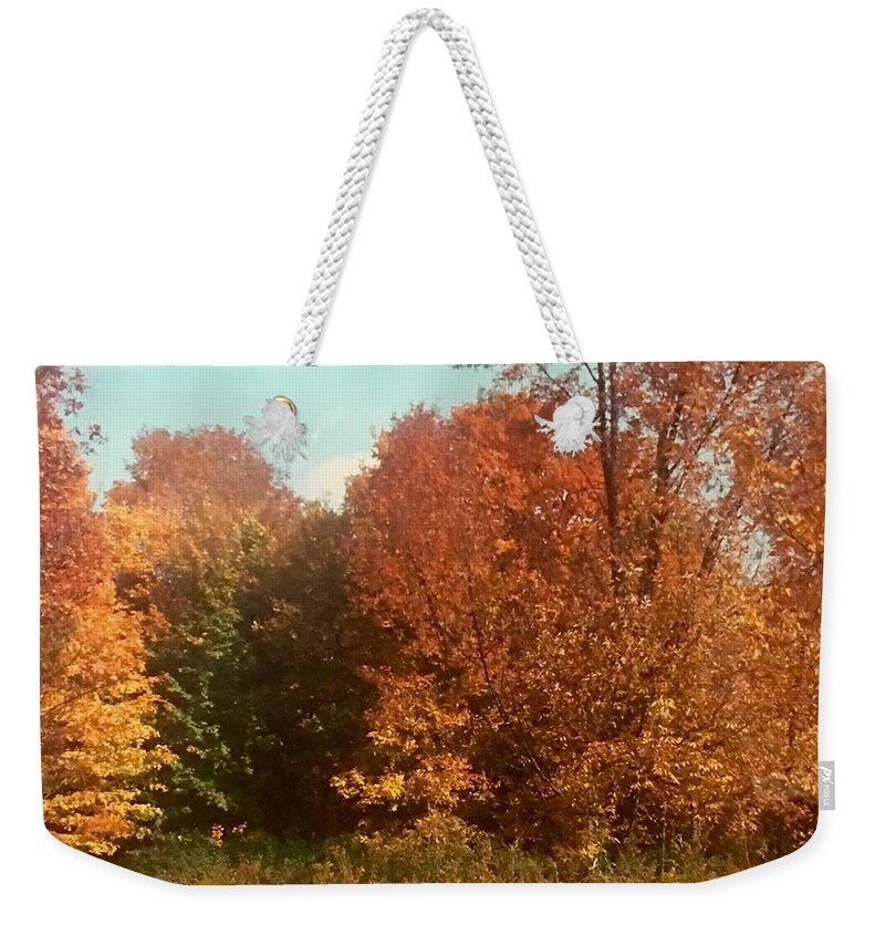 Weekender Tote Bag featuring the photograph Autumn Woods by Jo Ann Farabee